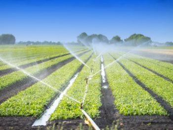 Mesure en agro-alimentaire
